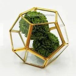 Geometric Golden Terrarium