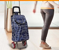 Parasnath Foldable Shopping Trolley Bag
