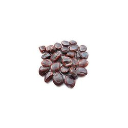 Tamarindus Indica Seeds