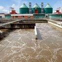 Microbes for Anaerobic Waste Water Treatment Plant