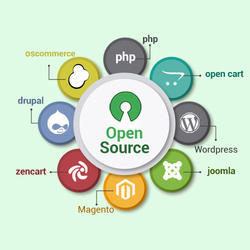 Open Source CMS Development Services