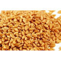 Sharbati Wheat Grains