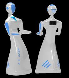 Serving Robots