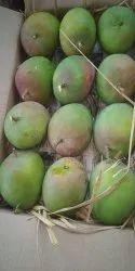 Alphonso Hapus Mango