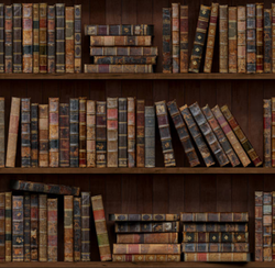 Statutory Books And Records Service