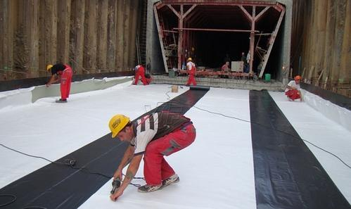 Bituminous Waterproofing - ShaliTex Primer Manufacturer from Kolkata