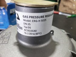 Gas Pressure Regulator Cum Filter