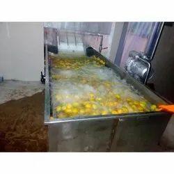 Mango Pulp Processing Plant