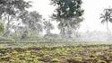 Irrigation Rain Pipe