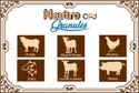 Poultry Veterinary Liquid Calcium Tonic (Neutro CPD Liquid)