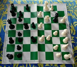 White National Chess Board Available With Best Quality Chess Pieces, Packaging Type: Packet
