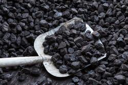 coal Testing, for every type