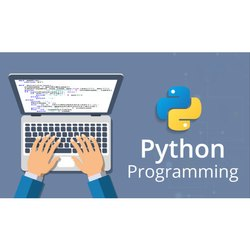 UI Python Development Service