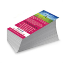 Pamphlet Flyer Printing Service