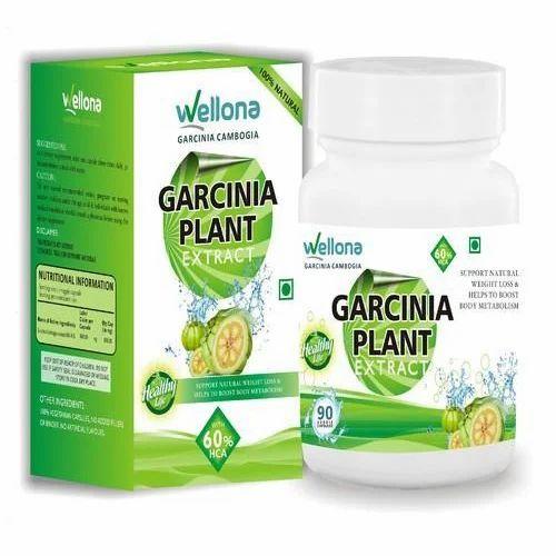 Garcinia Cambogia Plant Extract 90 Veggie Capsules Rs 1599