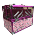 Transparent Beautician Vanity Case
