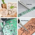 Soldering Set With Pyrography Tips