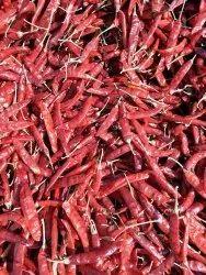 Red Chilli Powder 5KG