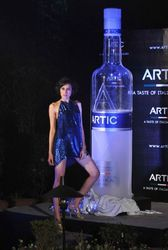 Product Replica For Artic Vodka Bottle