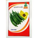 Icon Natural Hybrid Bhindi Seeds, Packaging Type: Packet, Packaging Size: 50gm