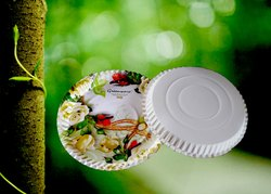 Circle Greenware Revolution Paper Plate