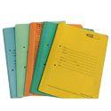 Cobra Spring Office File Folder
