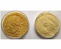 Dried Cassia Tora Powder