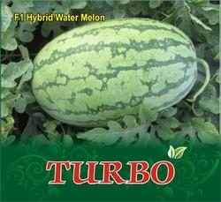 F-1 Hybrid Watermelon Seeds