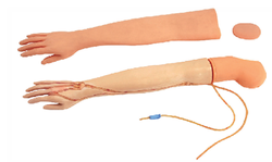 IV Training Arm Model