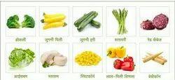 Green Broccoli Exotic Vegetables