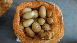 Fresh Potato, Packaging: Carton