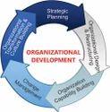 Organizational Development Consulting