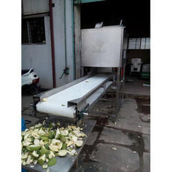 Automatic Mango Cutting Machine