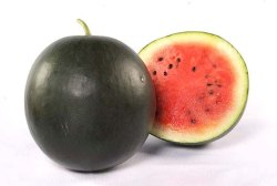 Watermelon Dark Green Fruits Seed