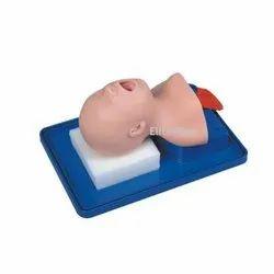 Newborn Baby Trachea Intubation Model