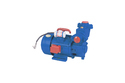 Domestic Monoblock Water Pump