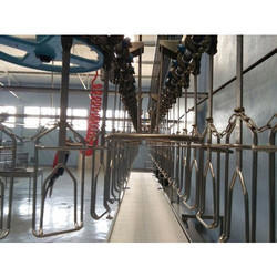 Evisceration Belt Conveyor