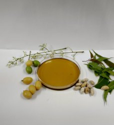 Refined Sunflower Oil - Refined Sunflower Tel Latest Price