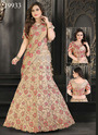 Bollywood Embroidered Lehenga Choli