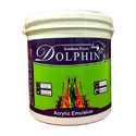 Dolphin Plastic Emulsion Paint, Packaging: 10 Litre