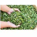 Dried Stevia Leaves, Packaging Type: Packet/Plastic Jar
