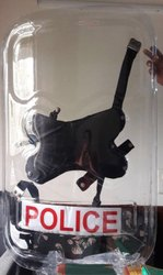 Polycarbonate Police Riot Shield