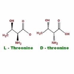 L Threonine Powder