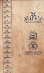 Kelp Ply Mr Plywood