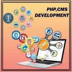Cms Development Services