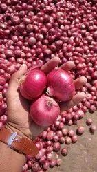 Dry A Grade Nashik Onion, For Human Consumption, 50 kg