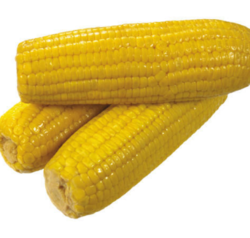 Indian Yellow Corn, Organic