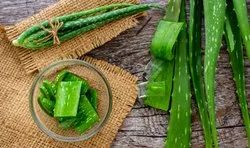 Aloevera Gel And Aloevera Leaf