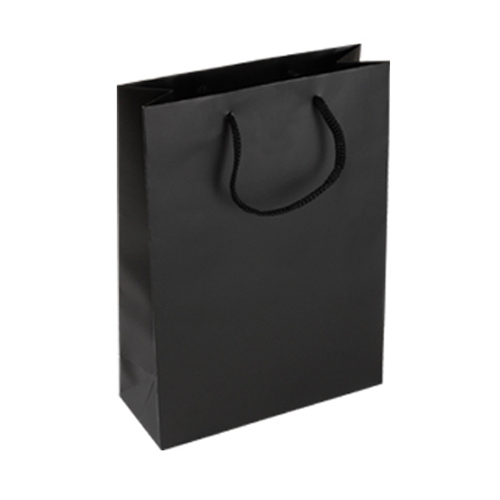 Shopping Bag - Plain Paper Shopping Bag Manufacturer from Raipur