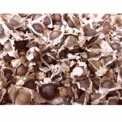 Herbal Moringa Seeds
